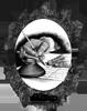http://3mushketera.forumrpg.ru/files/0011/30/a6/97480.png
